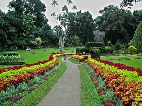 haggala park image of lemas.lk