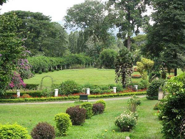 peradeniya botanical gardens image of lemas.lk