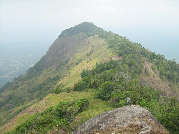 piduruthalagala image of lemas.lk